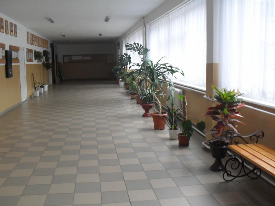 Золотий фонд Перегінської школи №1
